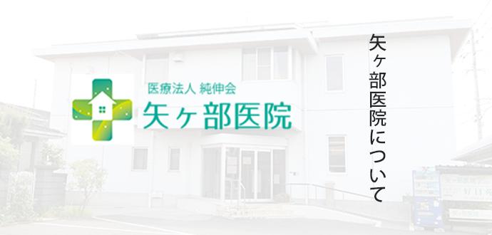 矢ヶ部医院について