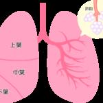 COPD;慢性閉塞性肺疾患(肺気腫など)の方やご家族に卒煙をお勧めする理由